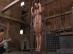 A metal cage and a harsh mistress is all that this cunt needs to be disciplined. Stick around and have a enjoyment how the mistress plays with this stripped cutie and how obedient that babe will become. Each wicked doxy deserves a treatment like this!