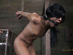 Isn't Nikki a fascinating beauty and hawt too? She's tied, blindfolded and face aperture gagged with a ball. A big black male pumps her from behind and rips Nikki's pussy before taking care of her mouth. His white buddy comes to aid him chastise this floozy and fucks her ass from behind also during the time that the black one deep mouths her